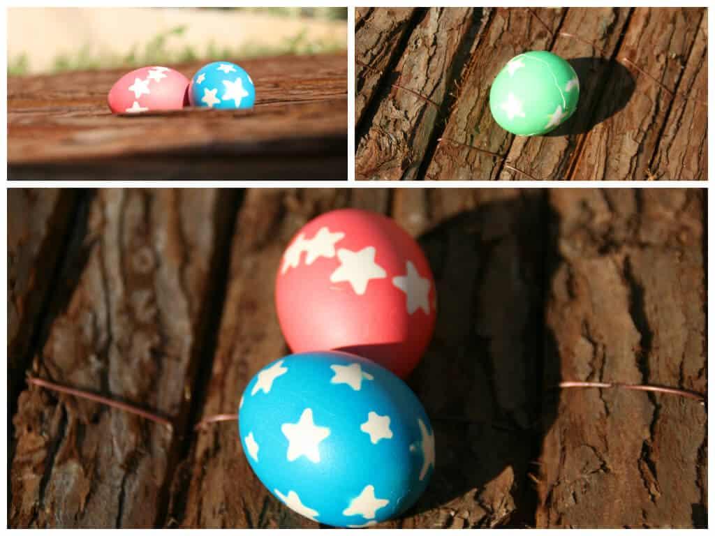 סופי-ביצים
